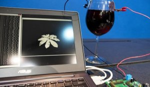 winebees_intel's wine-powered project